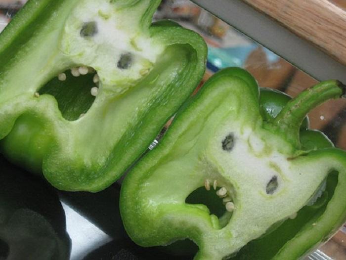 Перцы в ужасе, что их скоро съедят.