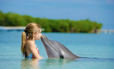 People_Entertainment_and_recreation_Girl_and_Dolphin_035480_