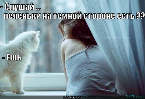 pechenki_1335845212[1]