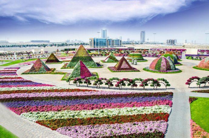 Вид на парк цветов в Дубае, ОАЭ
