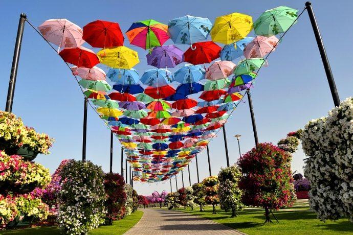 Навес из зонтов в парке цветов в Дубае, ОАЭ