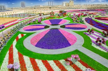 Невероятные композиции из цветов в парке в Дубае, ОАЭ