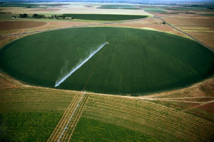 fields рис 5