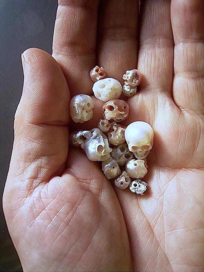 черепа из жемчуга рис 2