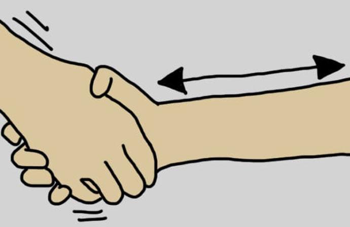 "рукопожатие ""тяни-толкай"""