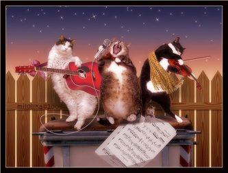 Кошачья вечеринка