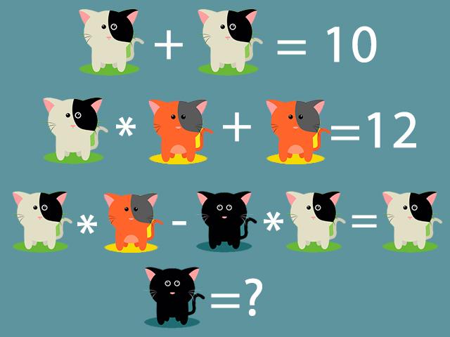 коты-загадка
