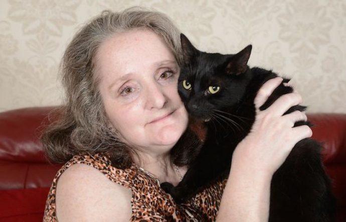 Коты-спасатели