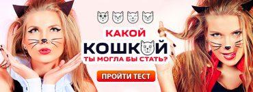 тест какая ты кошка
