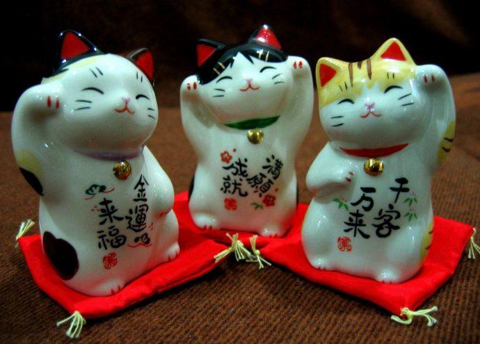 японский кот рис 4