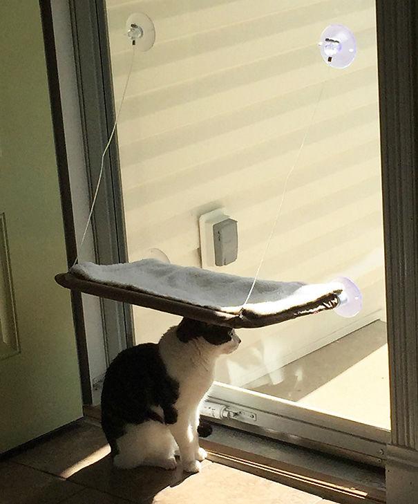 cats-logic