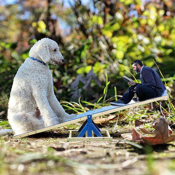 giant-dog