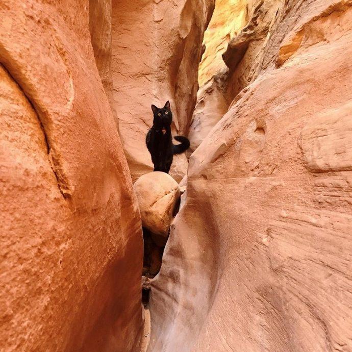 Angel Canyon, Utah @pechanga