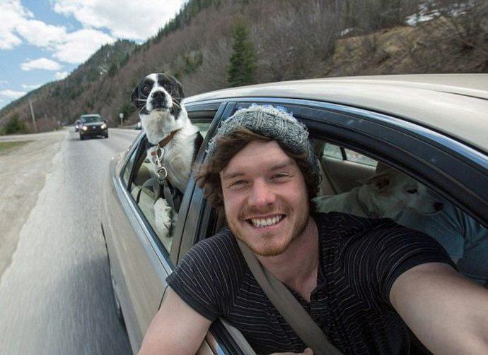 animal-selfies-09