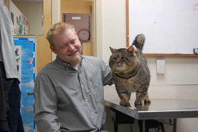big cat 6