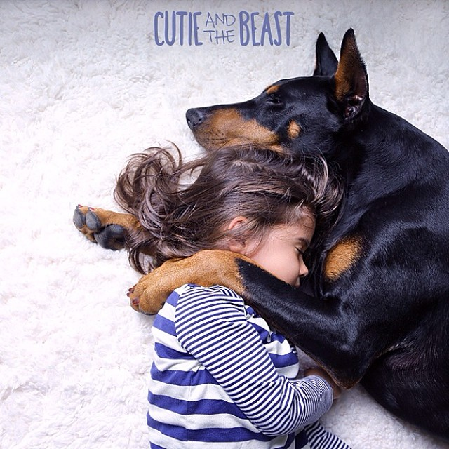 cutie-and-the-beast