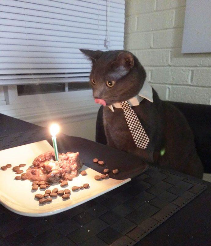 birthday рис 5
