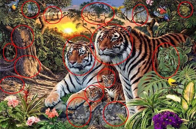 tigry (2)
