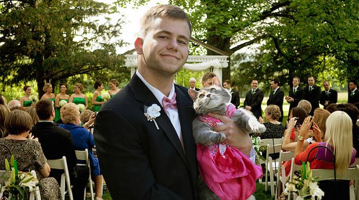 С кошкой на выпускной