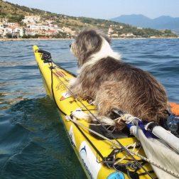 Испанец путешествует на лодке с собакой
