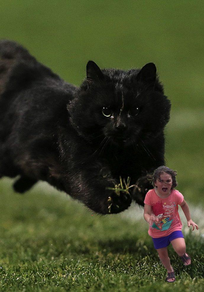girl-running-from-peacock-photoshop-battle-original-57855c739956a__700