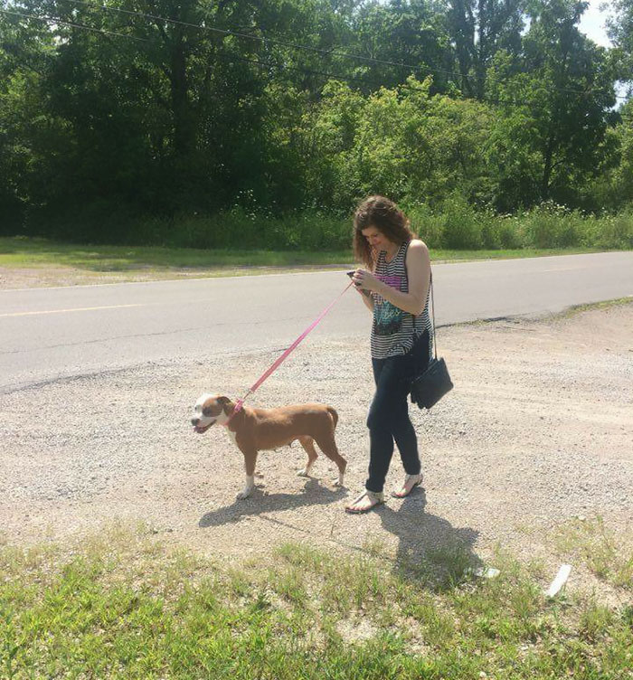 pokemon-go-dog-walking-animal-shelter-muncie-6