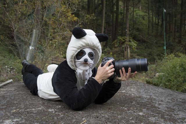 foto-panda (5)