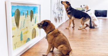 world-first-dog-art-exhibition-dominic-wilcox-london-fb