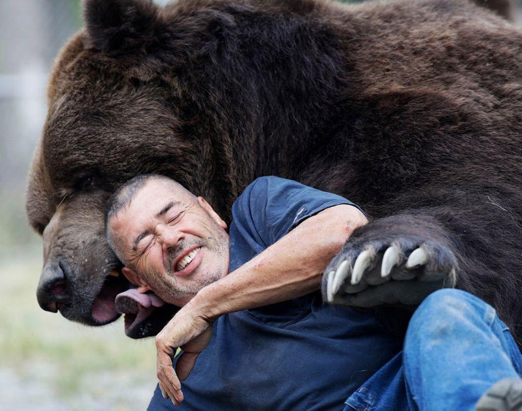 Самые большие медведи в мире фото порода