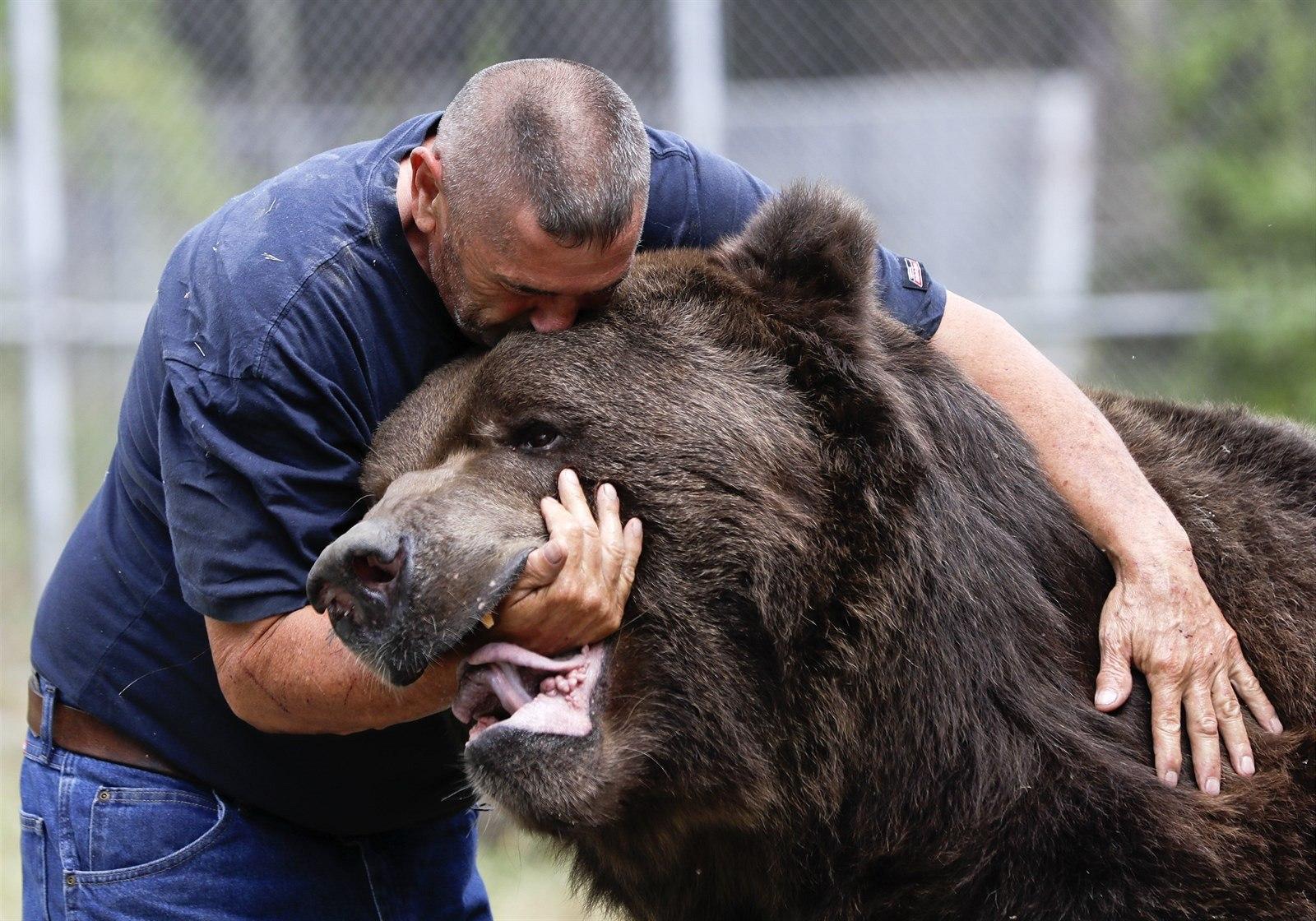 самые большие медведи в мире фото порода когда