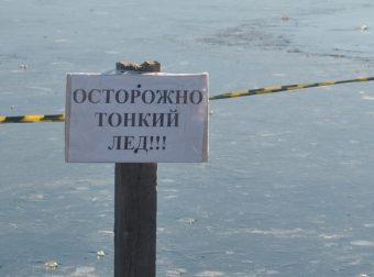 Парень из Энгельса не побоялся тонкого льда и спас трёх собак от гибели!