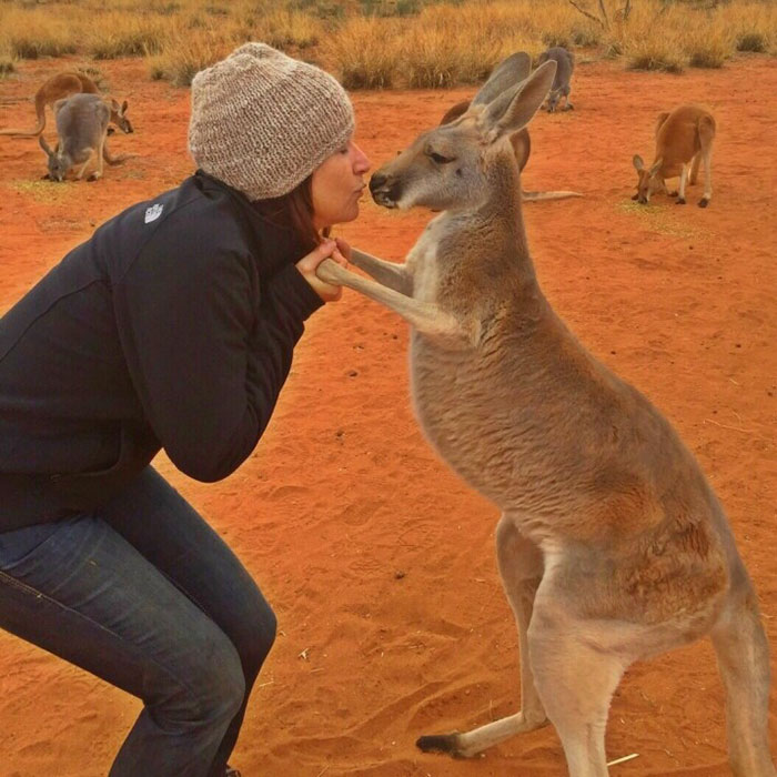 rescued-hugging-kangaroo-abigail-australia-4
