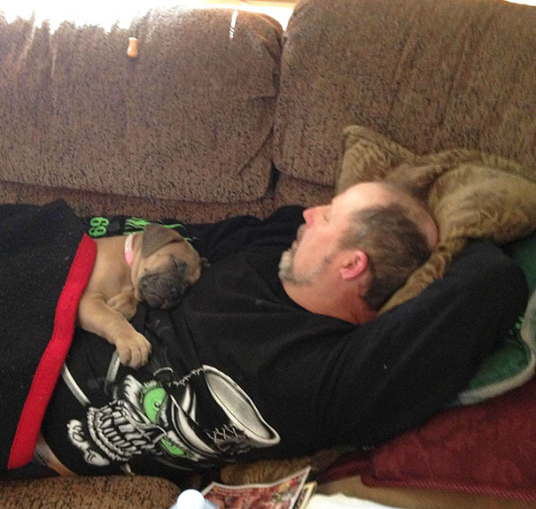 dads-who-didnt-want-dog