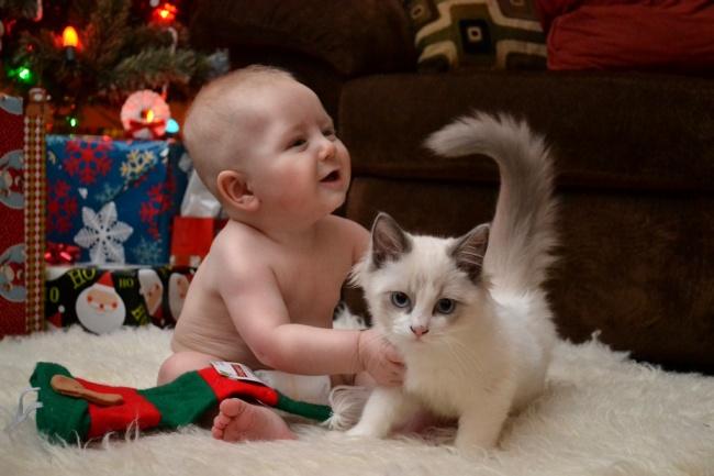 cute-