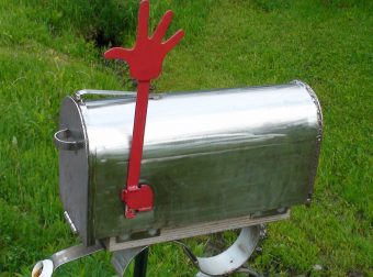 Что творится-то?! Женщина открыла почтовый ящик — и остолбенела: на неё смотрела явно не почта!