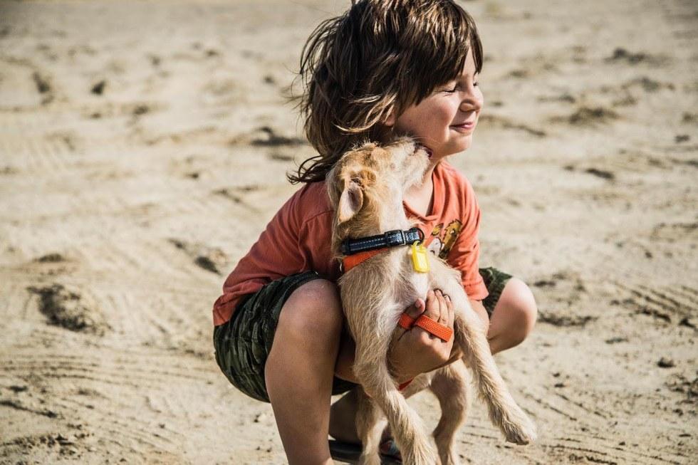 Ребёнок пролез сквозь колючую проволоку, чтобы спасти щенков... А другие дырявят уши дыроколом!!!