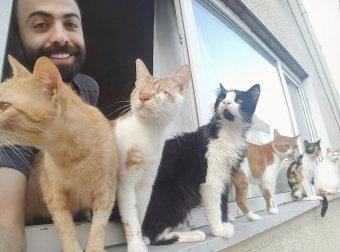 «Я сажаю слепую кошку на окно, и мы слушаем птиц…» Он спас девятерых, и теперь по ночам они приходят его благодарить!