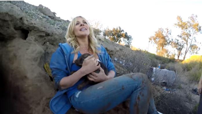 Такое опасное счастье - до слёз... Он ползал в поземных норах, спасая 9 щенят!!! рис 6