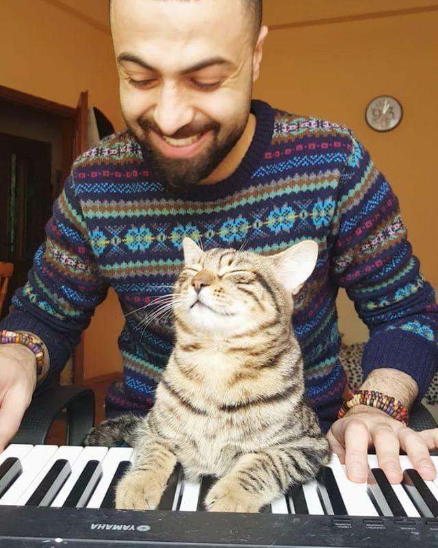 """""""Я сажаю слепую кошку на окно, и мы слушаем птиц..."""" Он спас девятерых, и теперь по ночам они приходят его благодарить! рис 2"""