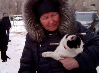 «Живой, мой Шурик…» Трагедия забрала у женщины мужа и внука, но за жизнь кота боролись до последнего!
