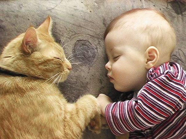 kids-with-cats-21-605