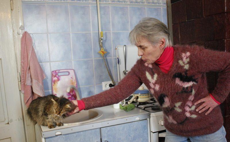 """""""Я просто не могу их бросить…"""" Женщина приютила около сотни бездомных животных, и сделала это красиво!"""
