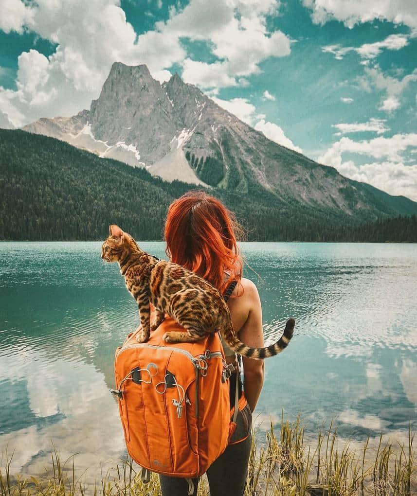 Картинки с путешественниками, рыбалку охотой