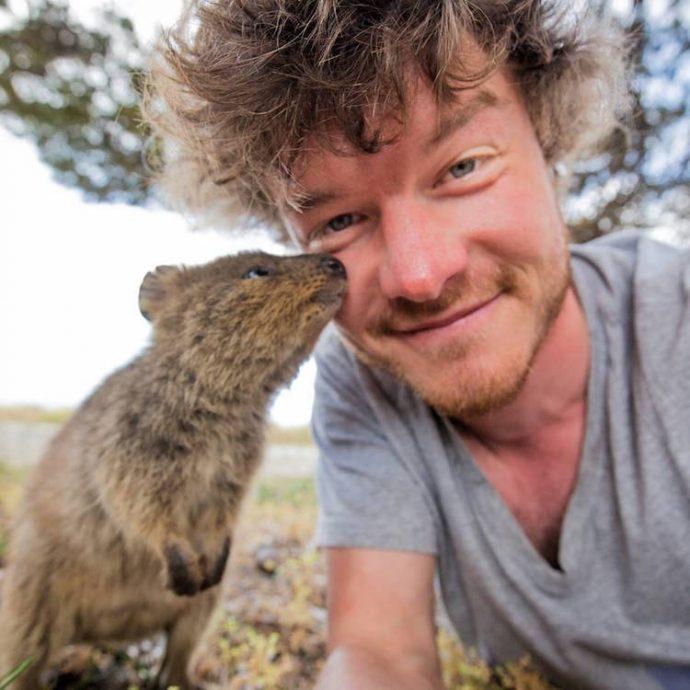 Самая искренняя улыбка в мире животных :) Ох уж эти удивительные квокки!