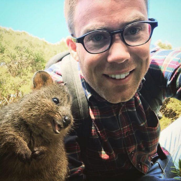 Самая искренняя улыбка в мире животных :) Ох уж эти удивительные квокки! рис 18