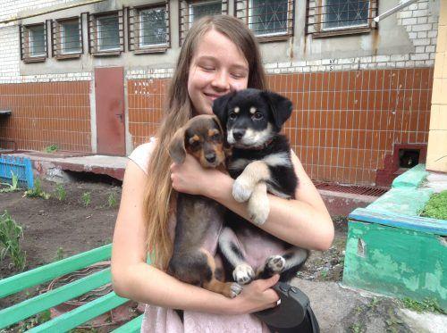 """""""Спасение животных – это зов моего сердца..."""" 15-летняя девушка приютила сотни животных и не собирается останавливаться! ) рис 2"""