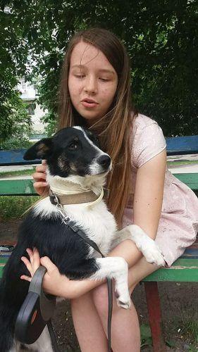 """""""Спасение животных – это зов моего сердца..."""" 15-летняя девушка приютила сотни животных и не собирается останавливаться! ) рис 3"""