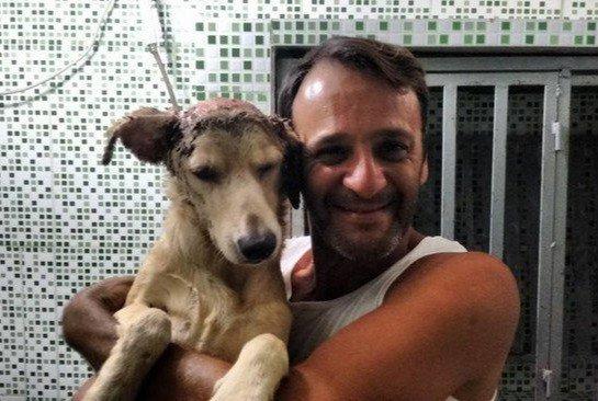 Нет таких ран, за которые он бы не взялся! Защитник животных из Бразилии спас безнадёжного щенка ) рис 7