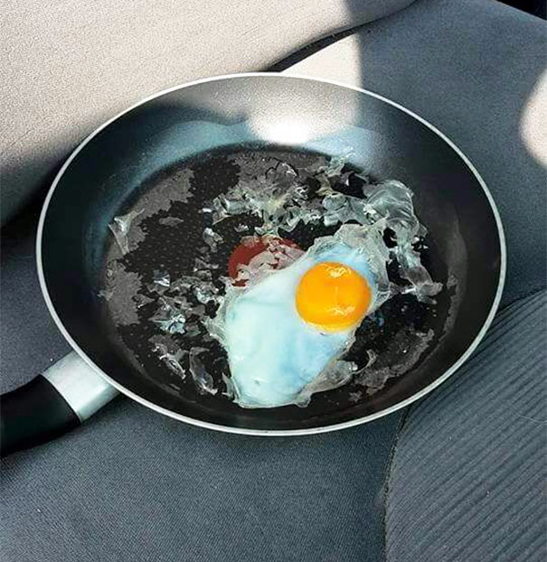 fried-egg-experiment-parked-car-dont-leave-dogs-hot-weather-3-5924258a02830__605