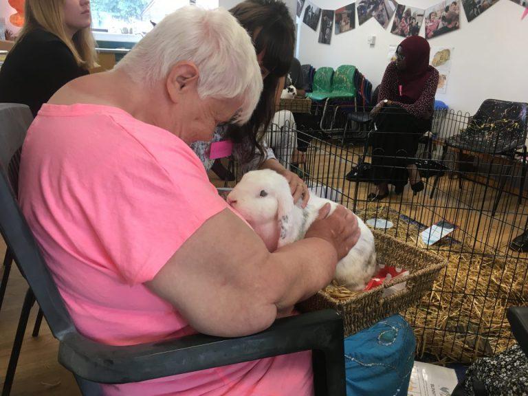 Долой одиночество! Как животные исцеляют души старых людей :) рис 2